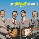 Buddy Holly - The Chirping Crickets LP