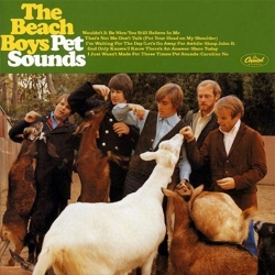 The Beach Boys - Pet Sounds 2LPs (45rpm, stereo)